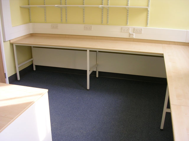 A corner desk at the Cambridge university department of zoology