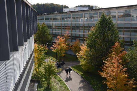 Trees outside a laboratory